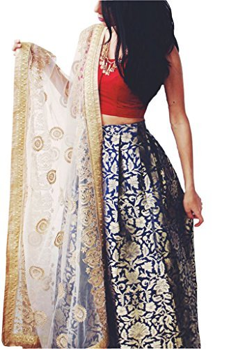 Phoniex Women\'s And jekat Blue Color Lehenga Choli (Phoniex BlueLeh_01 Blue And RedColoured_Free Size)