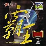 Palio Belag Conqueror Biotech, 2,2 mm, schwarz