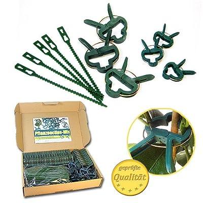 Pflanzen Clips & - Binder stabile Pflanzenclips Pflanzenklammern für kleine & große Triebe Spaliere Rosenbögen Rankhilfen von MGS SHOP auf Du und dein Garten