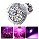 YFisk Crece Luz de Plantas 28 LED de 28 W con Casquillo E27 Lámpara de Espectro Completo Cultivo Hidropónico para el Crecimiento Flor Vegetal Plantas Invernaderos [Clase de eficiencia energética A+++]