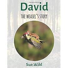 David: The weasel's story: Volume 4 (U.K. Mammals)