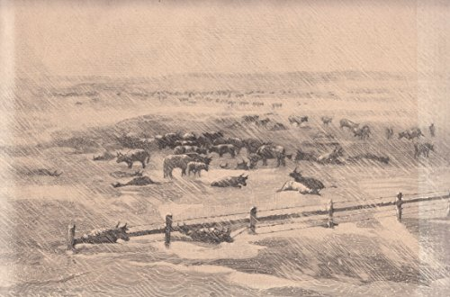 Amerika - Ansicht einer vom Schneesturm überraschten Viehherde im Westen der Vereinigten Staaten von Nordamerika. [Grafik]