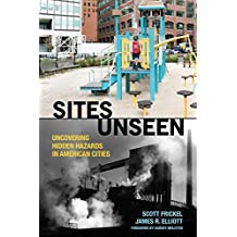 Sites Unseen: Uncovering Hidden Hazards in American Cities (Amer Sociological Association's Rose Ser)