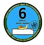 Feinstaubplakette 6 Diesel Nachrüstsatz Dieselskandal Dieselverbot Aufkleber Autoaufkleber Sticker Vinylaufkleber Decal