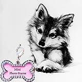 Periwin Dog tag, a forma di osso Pets ID nome etichetta indirizzo ciondolo cucciolo di cane collare anti-perso vibrazione