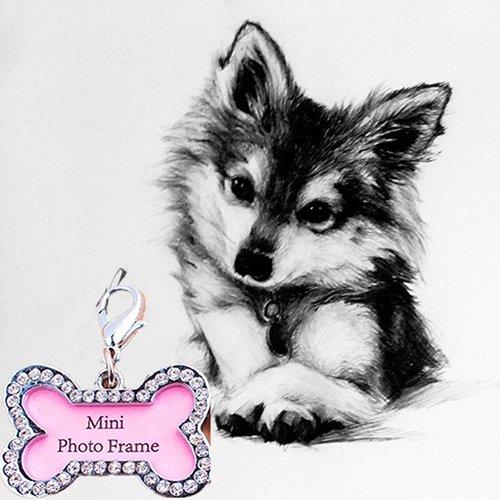 Unbekannt WFZ17 Hundemarke, Knochenform, Haustier-ID, Namensschild, Adressanhänger für Hundewelpen, Halsband (Hund Id-tags Schalldämpfer)