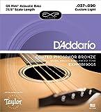 D'Addario Exppbb190gs 37–90Taylor GS Mini balance Cordes basse acoustique Bronze phosphoreux