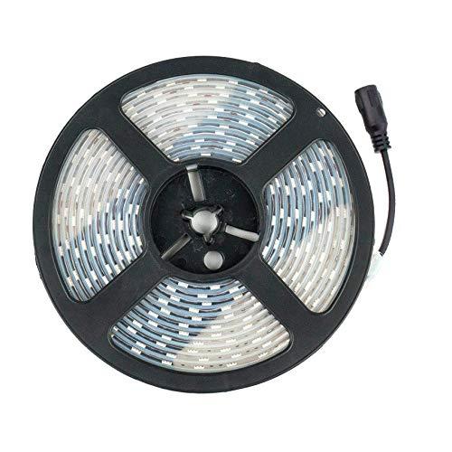 Tira LED 12V DC SMD5050 60LED/m 5m IP67 Blanco Neutro 4000K-4500K