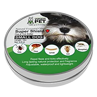 natural flea collar for small dogs | prevent and control fleas, ticks, lice and insects | all natural chemical and toxin free | safe for pets and family | long lasting up to 180 days! Natural Flea Collar for Small Dogs | Prevent and Control Fleas, Ticks, Lice and Insects | All Natural Chemical and Toxin Free | Safe for Pets and Family | Long Lasting up to 180 days! 51GKvOsa7SL