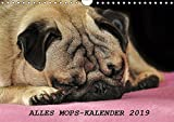 Alles Mops-Kalender 2019 (Wandkalender 2019 DIN A4 quer): Wunderbare Mopsmotive (Monatskalender, 14 Seiten ) (CALVENDO Tiere)