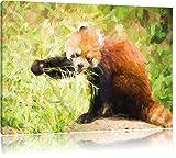 Carino Panda rosso effetto pennello, formato: 120x80 su tela, XXL enormi immagini completamente Pagina con la barella, stampa d'arte sul murale con telaio, più economico di pittura o un dipinto a olio, non un manifesto o un banner,