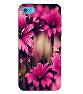 PrintDhaba Flower D-2035 Back Case Cover for APPLE IPHONE 5C (Multi-Coloured)