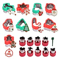 19 Pcs Stainless Steel Christmas Cookie Cutters Set Vegetable Cutters with Gingerbread Man,Snowman,Snowflake,Reindeer,Santa,Dinosaur for Christamas and Holiday Baking Gift