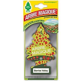 Arbre_Magique Wunderbaum 102334Lufterfrischer für Auto
