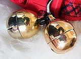 GB Falconry Falknerei hoher Ton/Dual Tone Glocken der Größe 5 (redtail, Harris, Habicht)