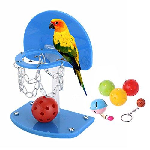 Petacc Juguete de Inteligencia Aves Aro de Baloncesto Loro Juguete Divertido loro con Balones de colores y campanas, Azul