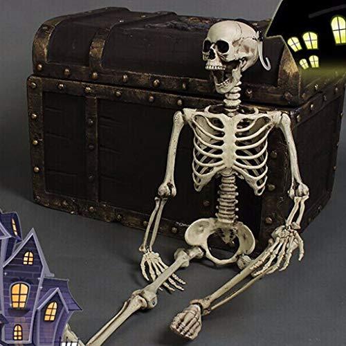 Kostüm Skelett Anatomisches - Hunpta@ Halloween Deko,Halloween Party Dekoration beweglich voller Größe menschlicher Schädel Skelett anatomisch Halloween-Dekorationen Gespenst Decoration Karneval (B)