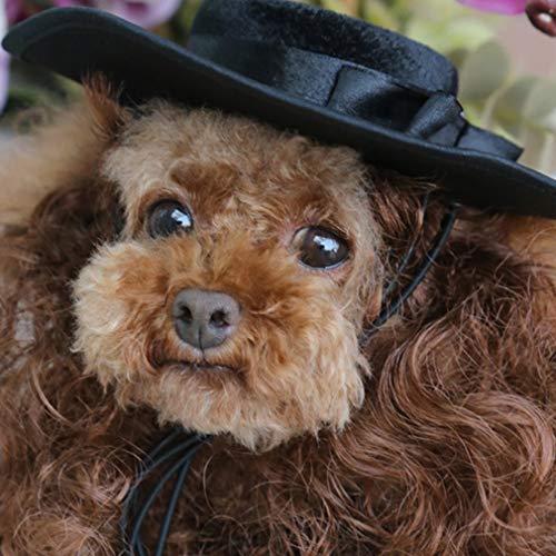 Hemore Katzen-/Hunde-Kostüm, Perücke, Hut, Französische Bulldogge Umhang