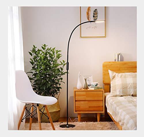 JUNBON Stehlampe LED Sofa Wohnzimmer Auge Leselampe Vertikale Schlafzimmer Nachttischlampe (Farbe : SCHWARZ)