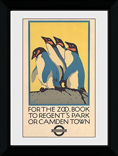 GB eye Ltd Transport for London, Zoo Kunstdruck, gerahmt, 50x 70cm, Holz, Verschiedene, 55x 75x 2,9cm -
