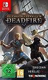 Pillars of Eternity II: Deadfire (Nintendo Switch)