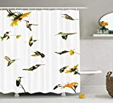 tgyew Hummingbirds Decorations Shower Curtain Set, Collection of Hummingbirds in Motion, and at Rest Sunflowers Summer Fun, Bathroom Accessories, 60W X 72L Inche Long