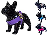 Flower Power Dog Pet Puppy Harness in Pink Black Blue or Purple Designer Fabric with rhinestone flower For Small Xsmall Medium Dog Breeds