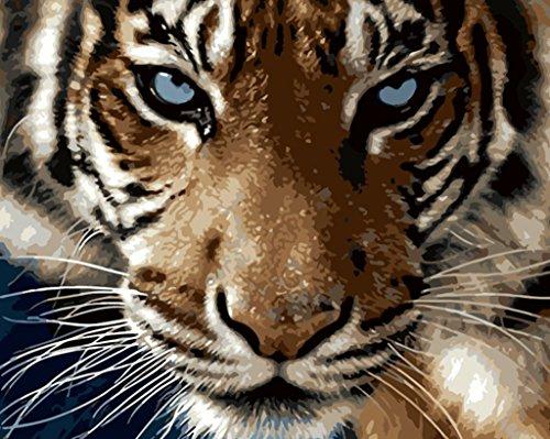 YEESAM ART Neuerscheinungen Malen nach Zahlen für Erwachsene Kinder - Majestic Tiger Sharp Eye 16 * 20 Zoll Leinen Segeltuch - DIY ölgemälde ölfarben Weihnachten ()
