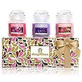 Bougie parfumée de luxe Ensemble cadeau par le cadeau. Comprend 8différents types de superbes Bougies parfumées et 3bougeoirs en verre métallique (Sungaze)