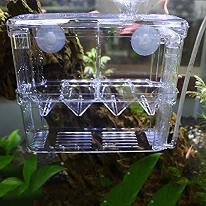 High-Transparent Self-Floating Multi-Function Fish Floating Fish Aquarium Hatchery Hatchery Box Double Layer Fish Tank… 1