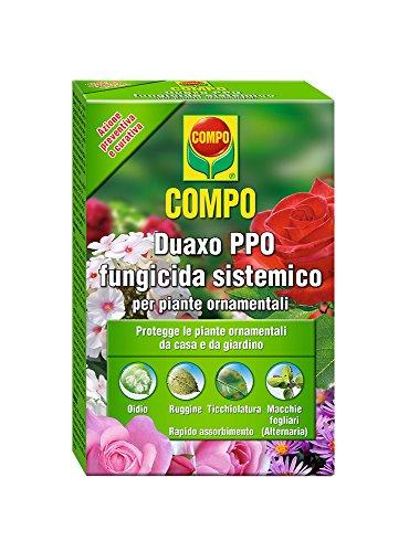 Compo 1441402005 Duaxo Fungicida per Piante, 100 ml, Trasparente, 4.5x7.5x12 cm