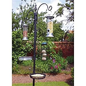 New Traditional Bird Feeding Feeder Feed Station Water Bath Seed Tray Hanging from a2z-discounts