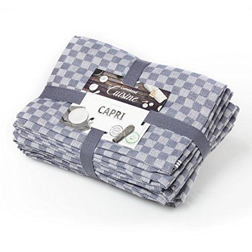 Lumaland Geschirrtücher Capri Serie in zehn Farben 10 Stück pro Set 100 % Baumwolle 46 x 70 cm Grau - Weiß (Capris Baumwolle)