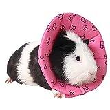 ZuckerTi Halskrause Halskragen Schutzkragen Wundheilung Hundehalsband Cone Schutz Smart Halsband Sicherheit für Kleintiere Eichhörnchen Meerschweinchen Ratte Mäuse Hamster Hase Kanichen kleine