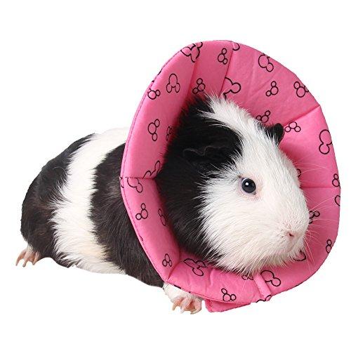 Halskragen Schutzkragen Wundheilung Hundehalsband Cone Schutz Smart Halsband Sicherheit für Kleintiere Eichhörnchen Meerschweinchen Ratte Mäuse Hamster Hase Kanichen kleine (Tunnel Trinken)