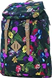 The Pack Society Premium Rucksack, 23 Liter, Multicolor Old Masters Allover