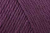 Caron einfach soft Acryl Aran Strickgarn Wolle Garn 170g -9761Pflaume perfekt