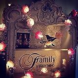 Sharplace 1 x Rosa Blumen förmig 2 Meter Glühbirnen Streifen 20-LED-Licht Party Dekor für Konzerte, Bühnen, Hotels