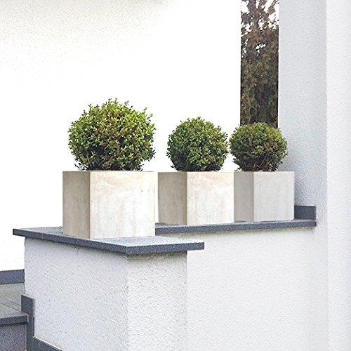 plantara-pflanztrog-blumenkubel-quercus-fiberglas-quadratisch-elfenbein-frostbestandig-23x23x23