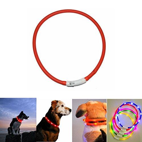 Case Wonder - LED Leuchthalsband Hunde Halsband - USB Wiederaufladbar - Längenverstellbarer Haustier Sicherheit Kragen / Blinkende Kragen Deluxe für Hunde und Katzen - Improved Hund Sichtbarkeit & Sicherheit - 3 Lights Mode & 8 Farben (Rot) (Wasserdicht Led-halsband)