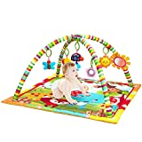 New Born Baby Playmat, Play Gym, Musical Activity Gym,Soft Toy, Fun Animals,Music,Textures,Rattle,Teethers, Mirror, Discovery Carpet for Infants Toddlers Newborn Kick and Playmat 0-36 Months
