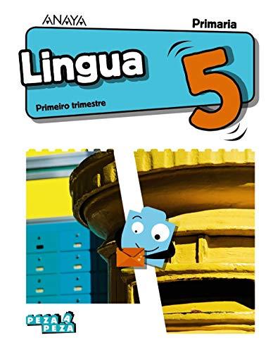 Lingua 5