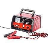 Chargeur de batterie automatique - 6 & 12 V
