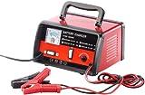 Lescars Autobatterieladegerät: Profi-Batterieladegerät für 6 V / 12 V, max. 6 A (Kfz Batterie Ladegerät)