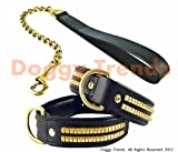 Set di accessori per cani, con collare imbottito in pelle e guinzaglio a catena in ottone, adatto per Staffordshire Bull Terrier, bulldog e rottweiler