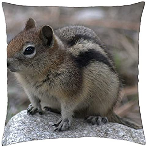 CUTIE FOR KITTY KATTY - Throw Pillow Cover Case