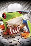 Avanti Karten - Humorkarte Geburtstagskarte Rapper Frosch 94-1049