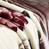 BDUK Couverture Raschel ultra-douce et confortable après-midi des couvertures de...