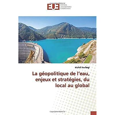La géopolitique de l'eau, enjeux et stratégies, du local au global