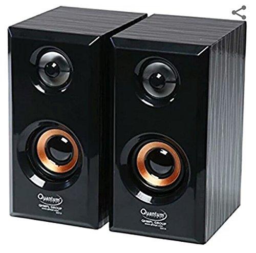 Quantum QHMPL USB Mini Speaker (Black)
